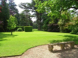 Lawn and Ornamental Treatments